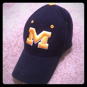 Other - Michigan Fitted Ballcap